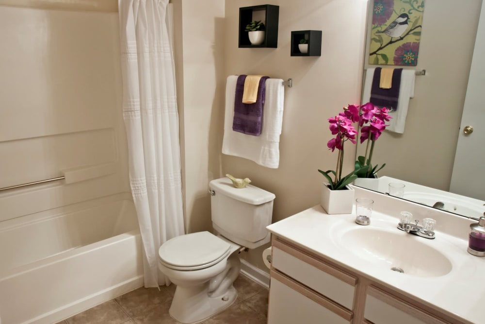 Fieldstone Apartments offers a beautiful bathroom in Mebane, North Carolina