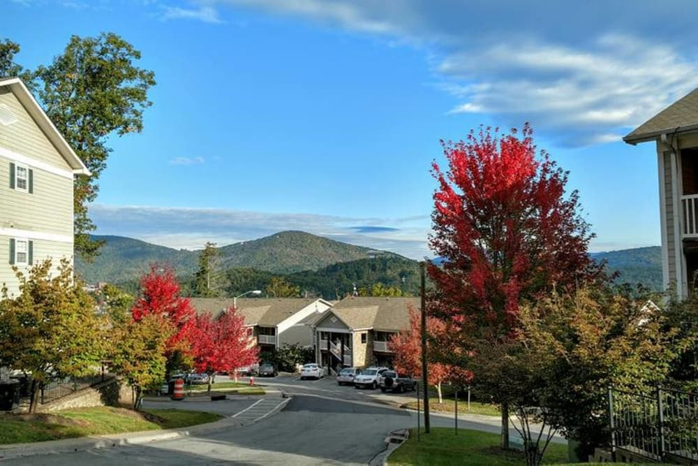 Beautiful Landscape At The Village Of Meadowview In Boone, North Carolina;  Exterior Of Apartments ...