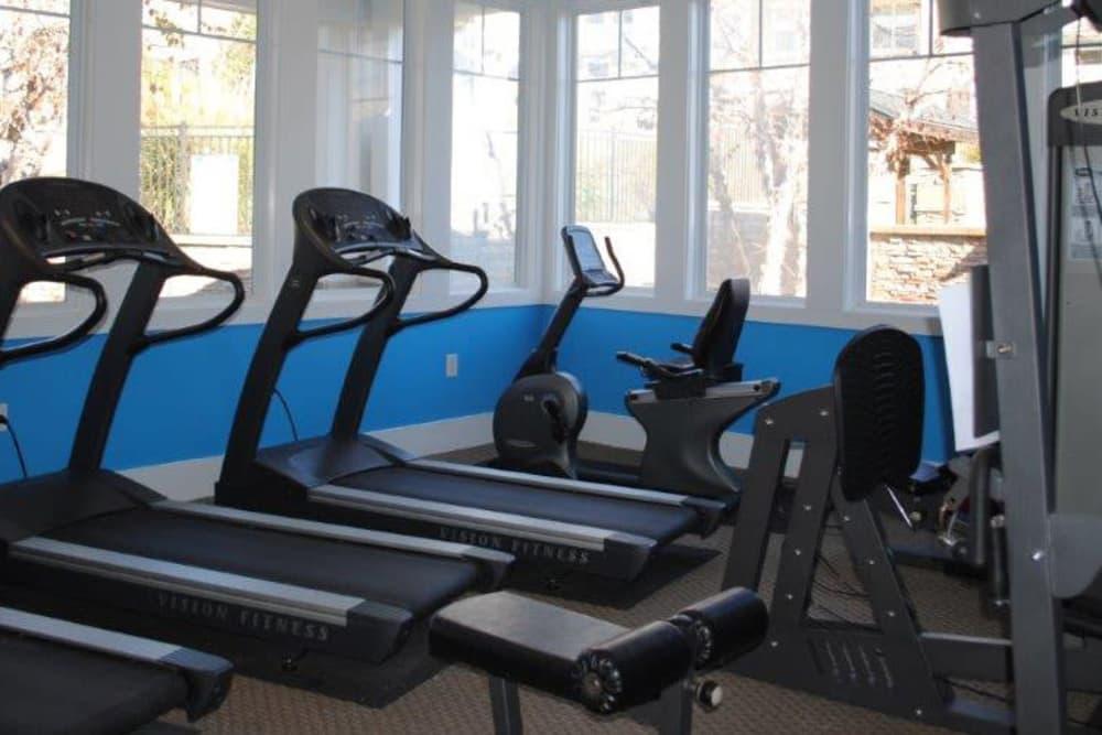 Fitness Center at Windsor Upon Stonecrest in Burlington, North Carolina