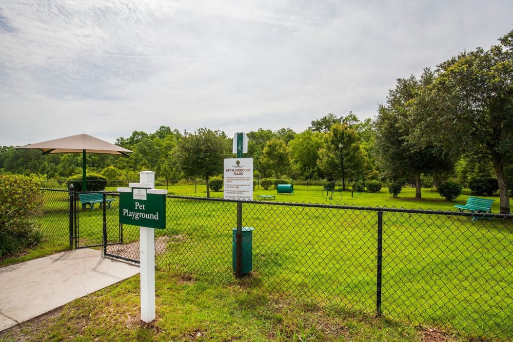 Dog Park at Panther Effingham Parc Apartments | Luxury Apartments in Rincon, GA