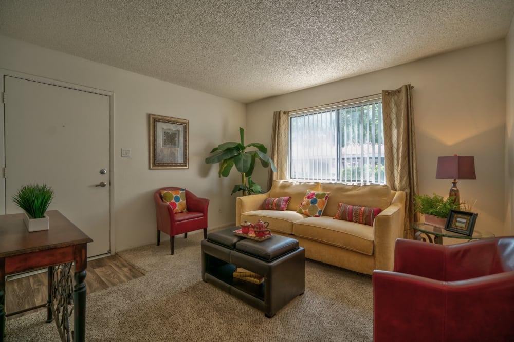Enjoy a cozy living room at Argenta Apartment Homes in Mesa, Arizona
