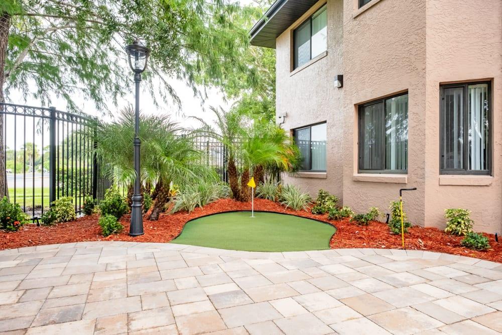 Greenery at Grand Villa of Englewood in Florida