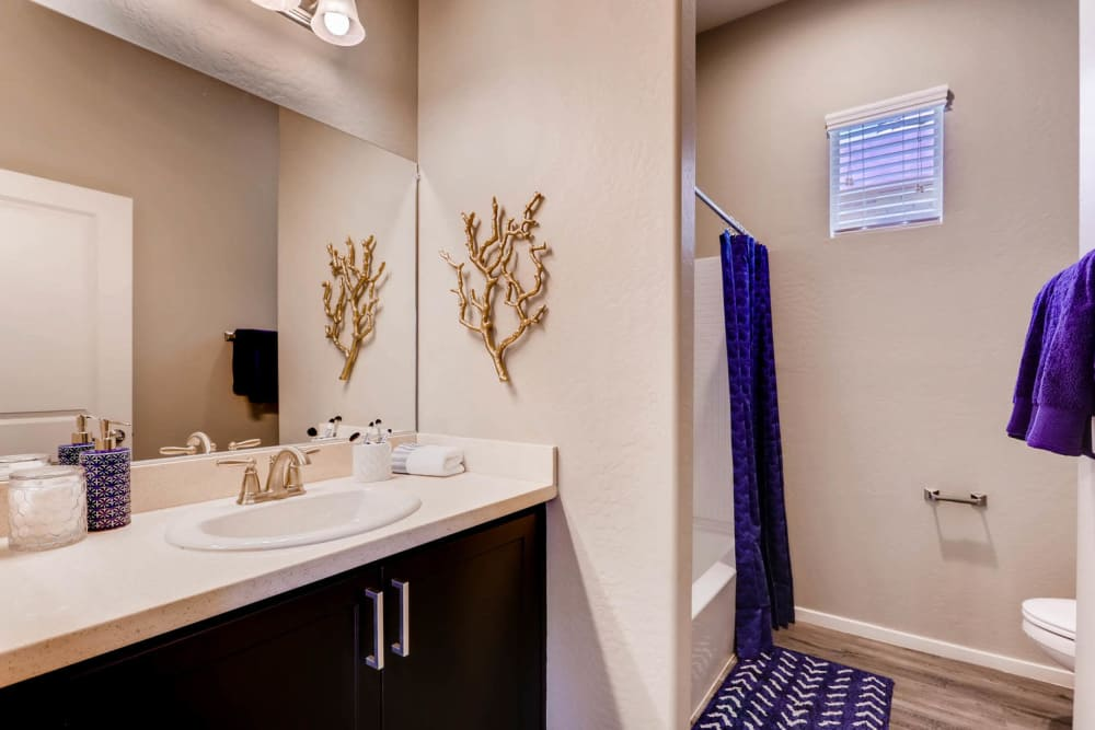 Modern bathroom at Avilla Lehi Crossing in Mesa, Arizona