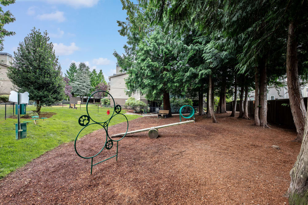 off-leash dog park and toys at Latitude Apartments