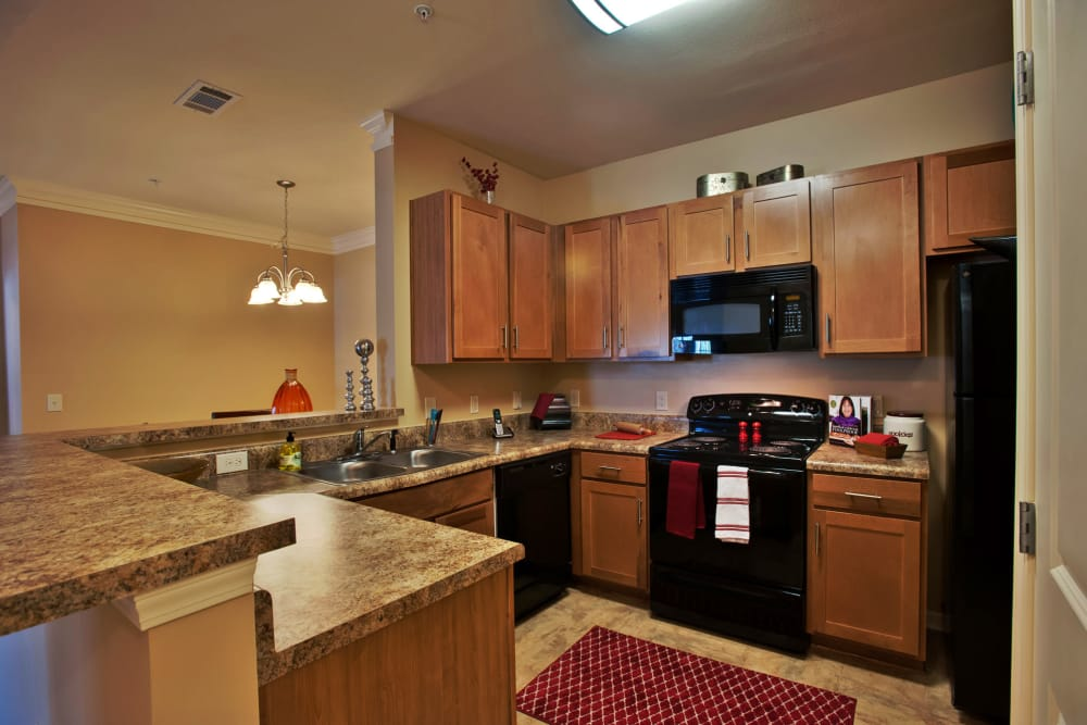 Black appliances and cherry wood cabinetry in kitchen of model home at Richland Falls in Murfreesboro, Tennessee