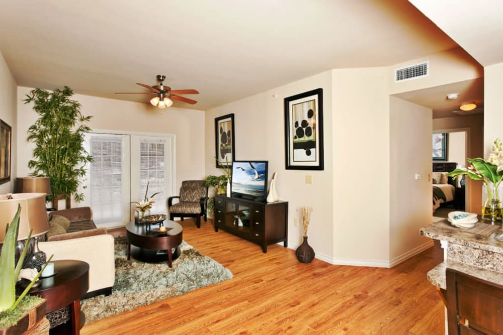Modern decor in open-concept floor plan of model home at Springmarc Apartments in San Marcos, Texas