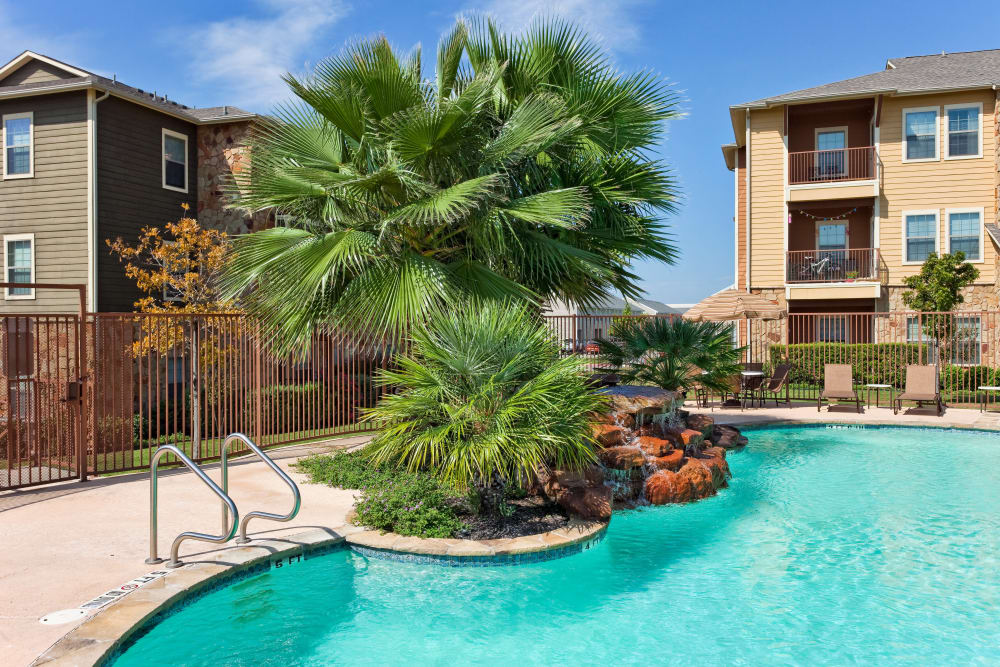Well-maintained flora near the pool at Springmarc Apartments in San Marcos, Texas