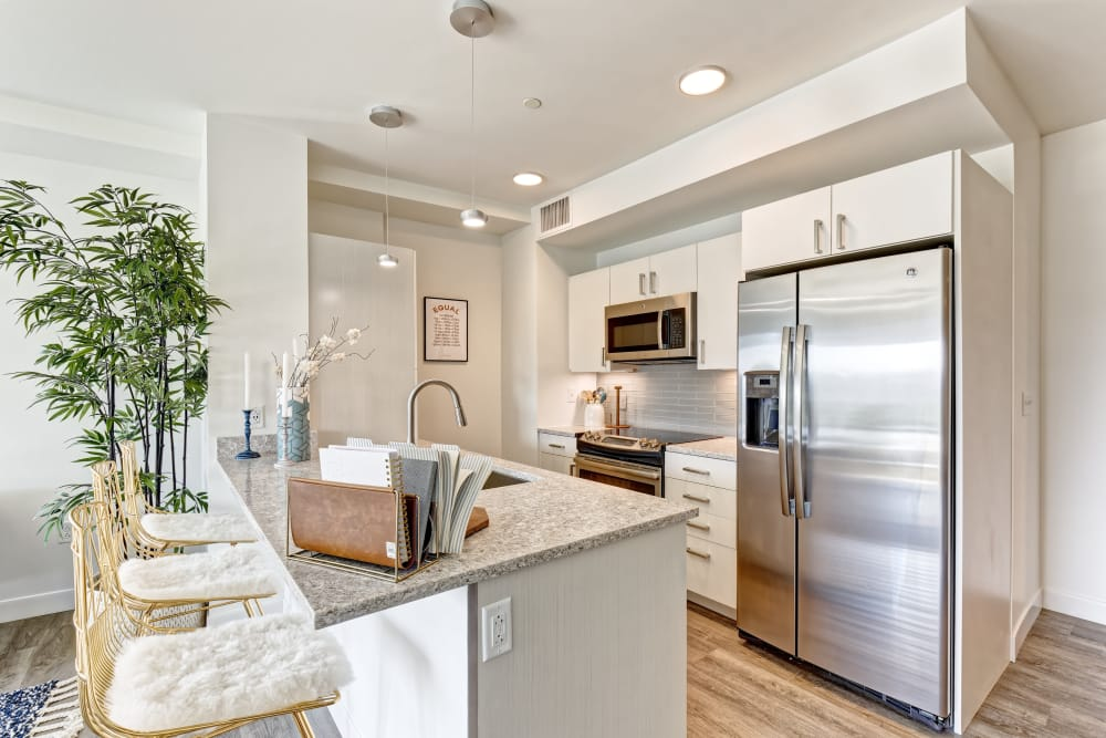 Vela on the Park offers a modern kitchen in Stamford, Connecticut