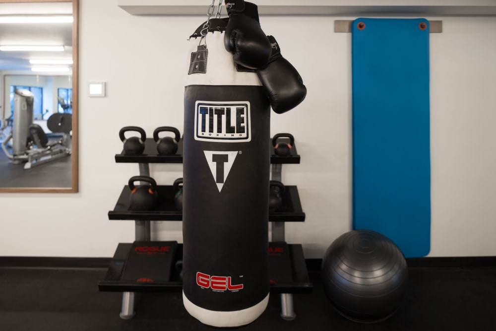 Punching bag in the fitness center at Eleven33 in Brooklyn, New York