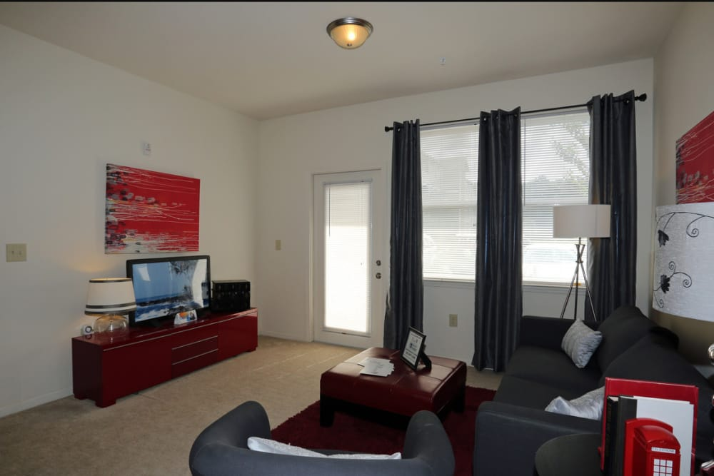 Spacious apartments with a living room at Woodside in Mobile, Alabama