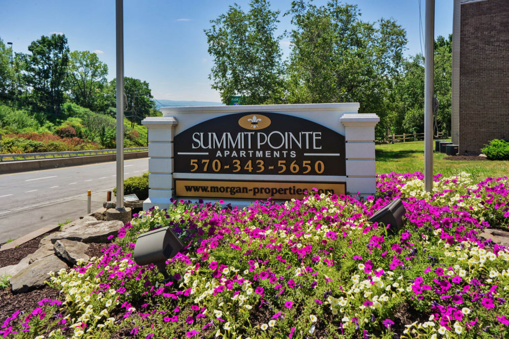 Entry Sign at Summit Pointe Apartment Homes in Scranton, Pennsylvania