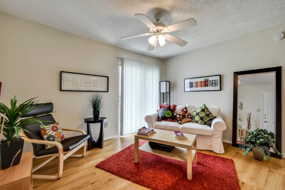 Modern living room at Nichols Park in Austin, Texas