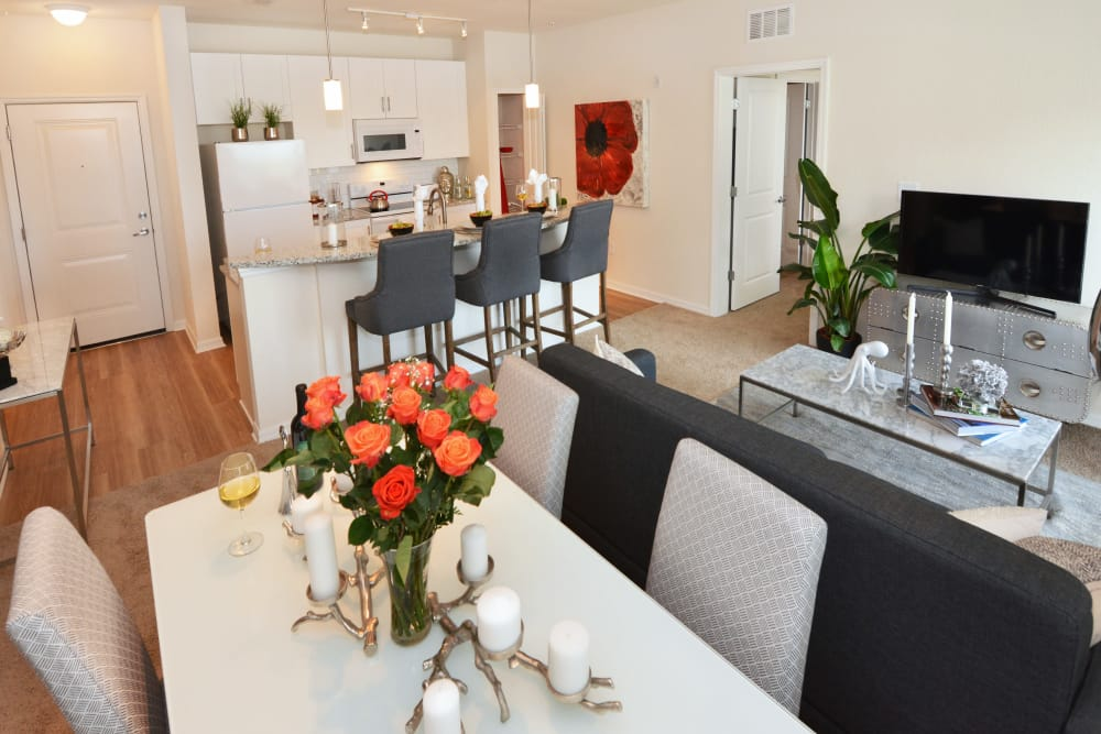 Interior of model apartment at Lola Apartments in Riverview, Florida