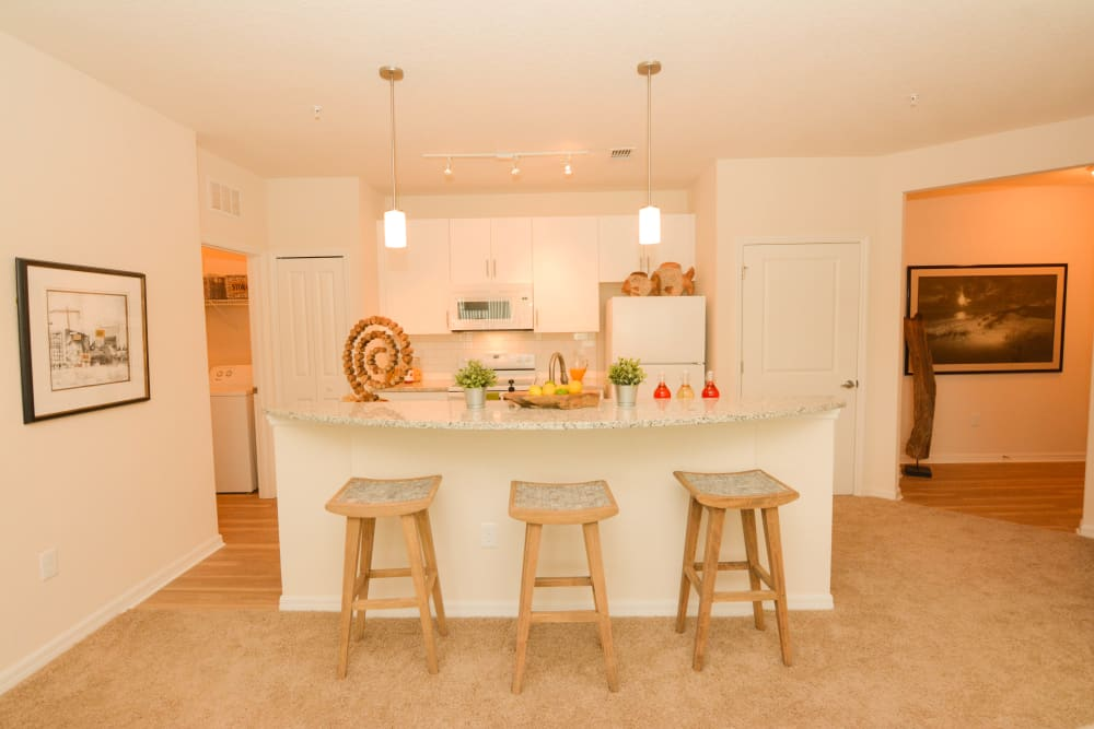 Kitchen bar at Lola Apartments in Riverview, Florida