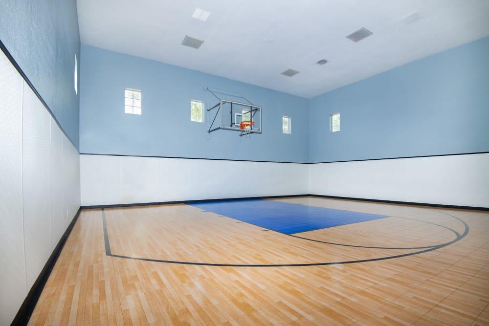 Basketball court at Rancho Palisades in Dallas, Texas.