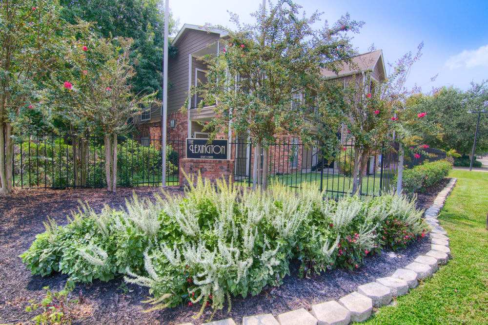 Well-manicured grounds at The Lexington Apartment Homes in Biloxi, Mississippi