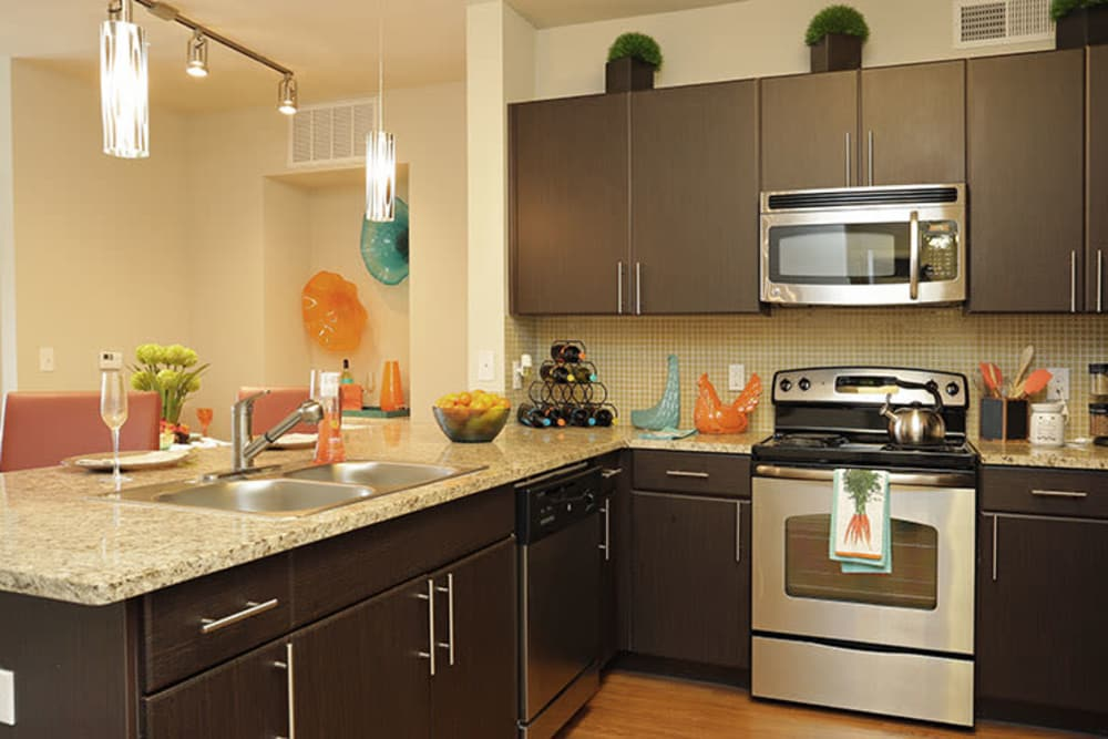 Stainless steel appliances at Addison Keller Springs in Addison, Texas