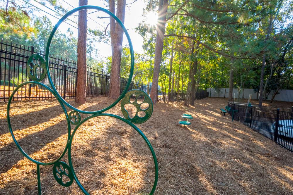 Dog park at The Stratford Apartments in Atlanta, Georgia