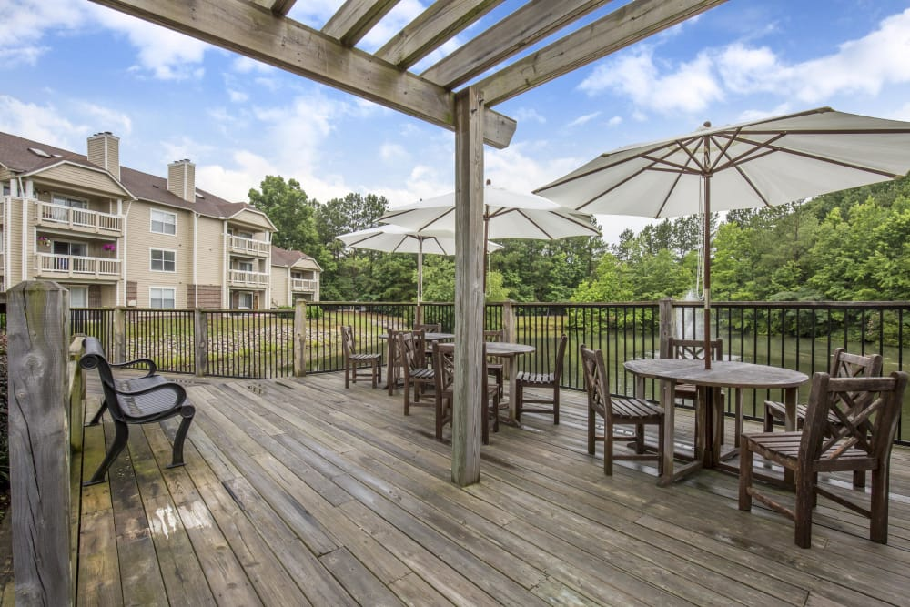 Outdoor picnic at Copper Mill Apartments in Richmond, Virginia