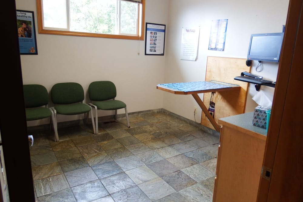 Exam table for pets at Angeles Clinic For Animals in Port Angeles, Washington