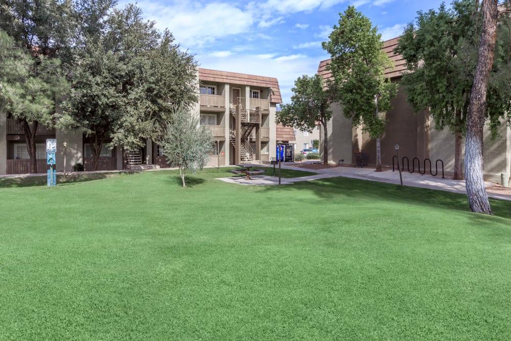 Green areas at Verde Apartments in Tucson, Arizona