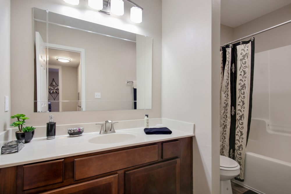 Bathroom  at Emerald Pointe Apartment Homes