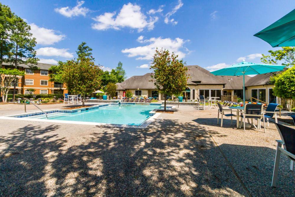 Enjoy a refreshing pool at Legacy at Cypress in Cypress, Texas