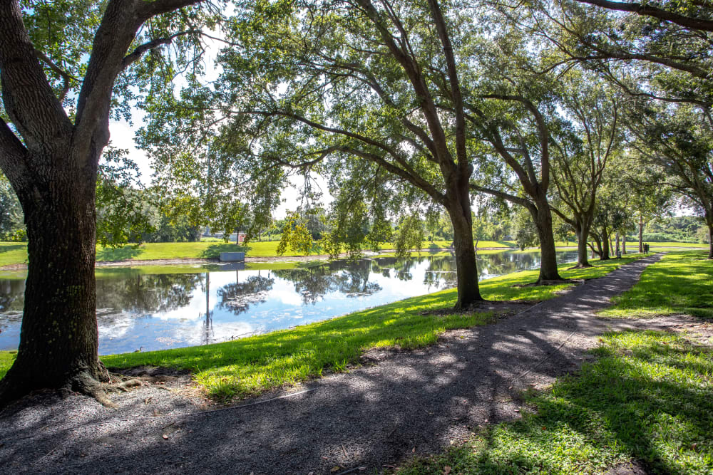 On-site pond at IMT Newport Colony in Casselberry, Florida