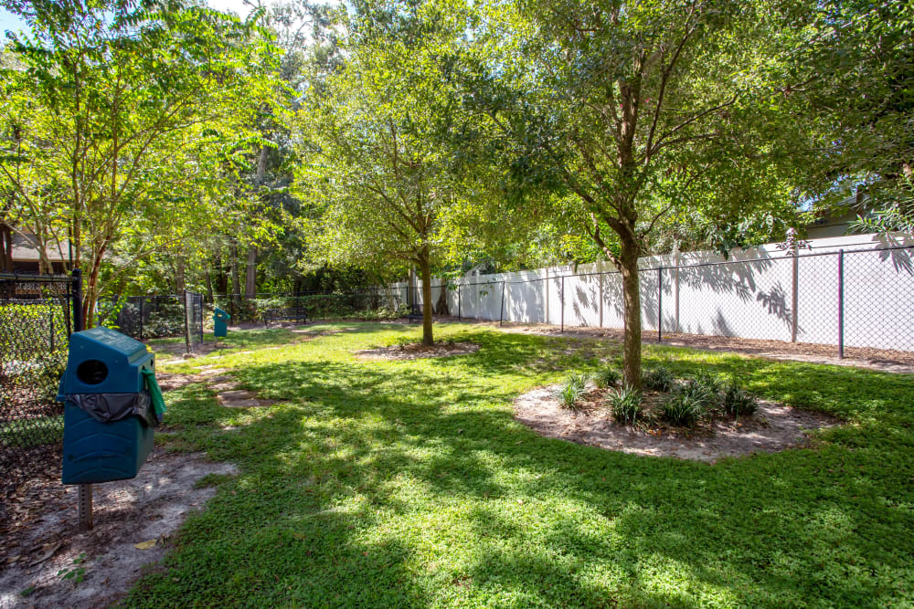 On-site dog park at IMT Newport Colony in Casselberry, Florida