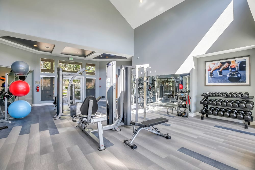 The Pines at Castle Rock Apartments offers a Gym in Castle Rock, Colorado