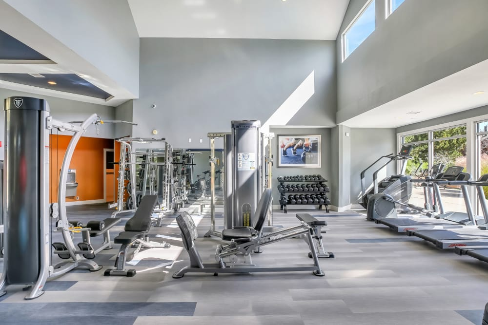 Exercise equipment in a gym room at The Pines at Castle Rock Apartments in Castle Rock, CO
