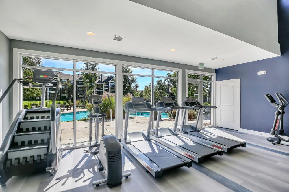 Gym at The Pines at Castle Rock Apartments in Castle Rock, CO