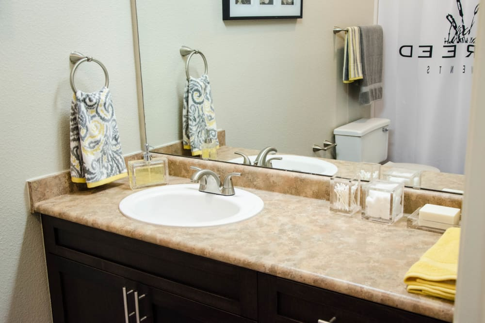 Master Bathroom at Wildreed Apartments