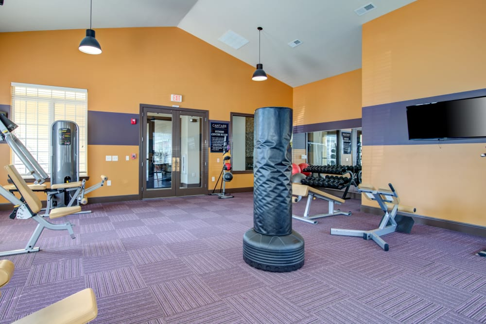 Modern fitness center at apartments in Hendersonville, Tennessee