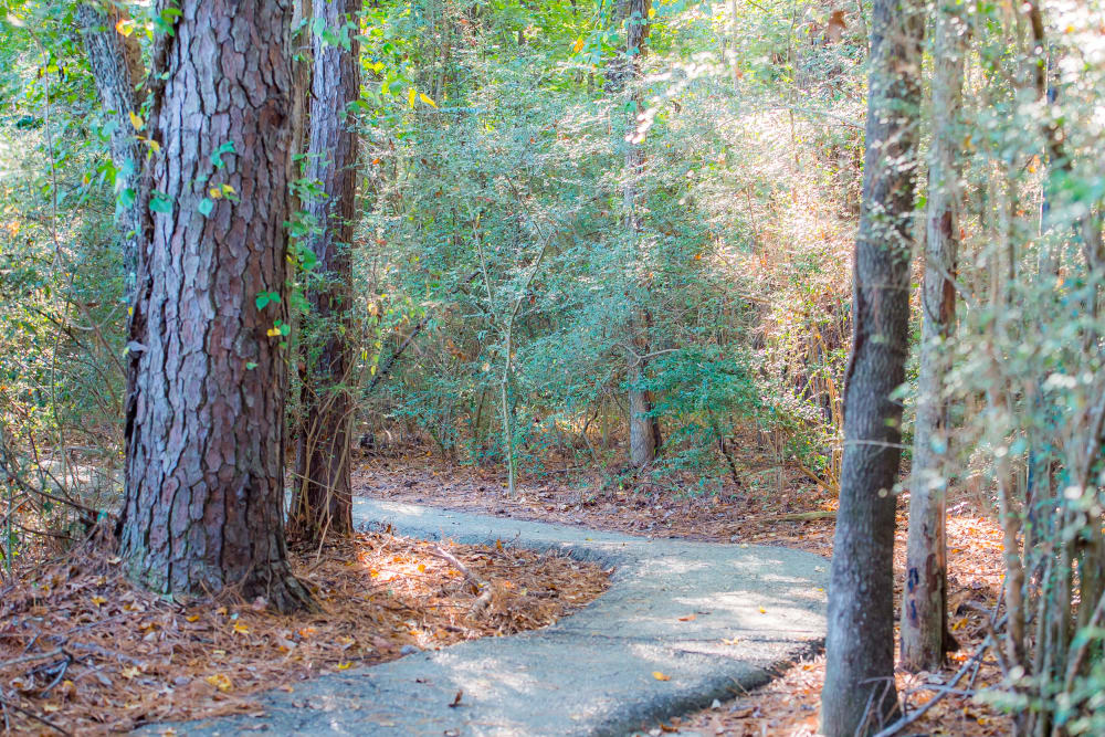 The Pointe of Ridgeland's walking paths in Ridgeland, Mississippi