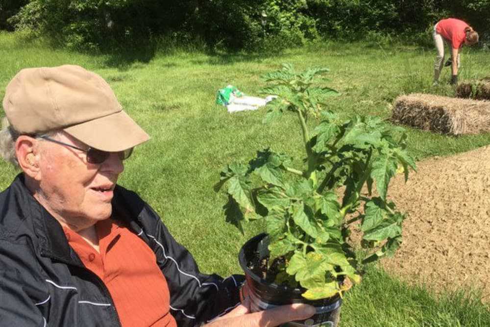 A resident holding a plant to plant in the garden at The Villages at Historic Silvercrest in New Albany, Indiana