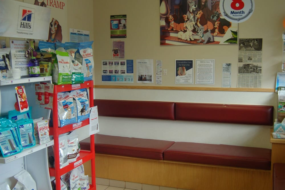 Reception area at Kenmore Animal Hospital in Kenmore, New York