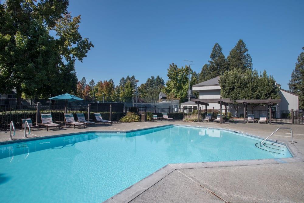 Luxury swimming pool at Park Ridge Apartment Homes in Rohnert Park, California