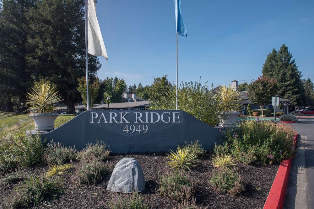 Beautiful apartments at Park Ridge Apartment Homes in Rohnert Park, California