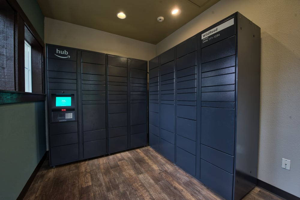 Package Locker at Wildreed Apartments