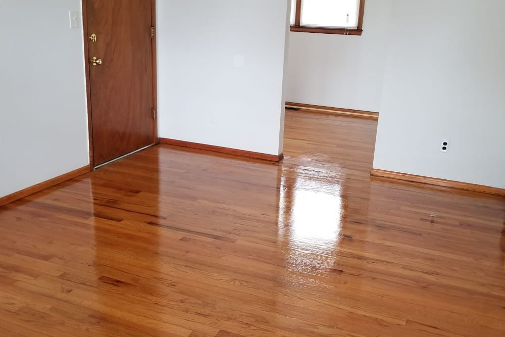 Hardwood floors at Warner Village Apartments in Trenton, New Jersey