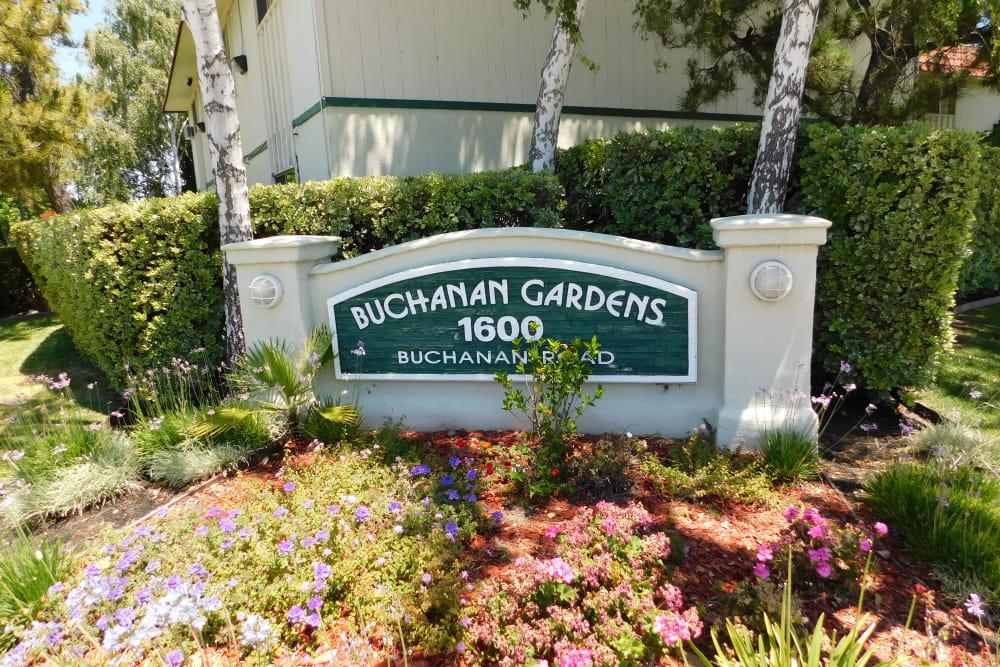 Beautiful landscaping at Buchanan Gardens in Antioch, California
