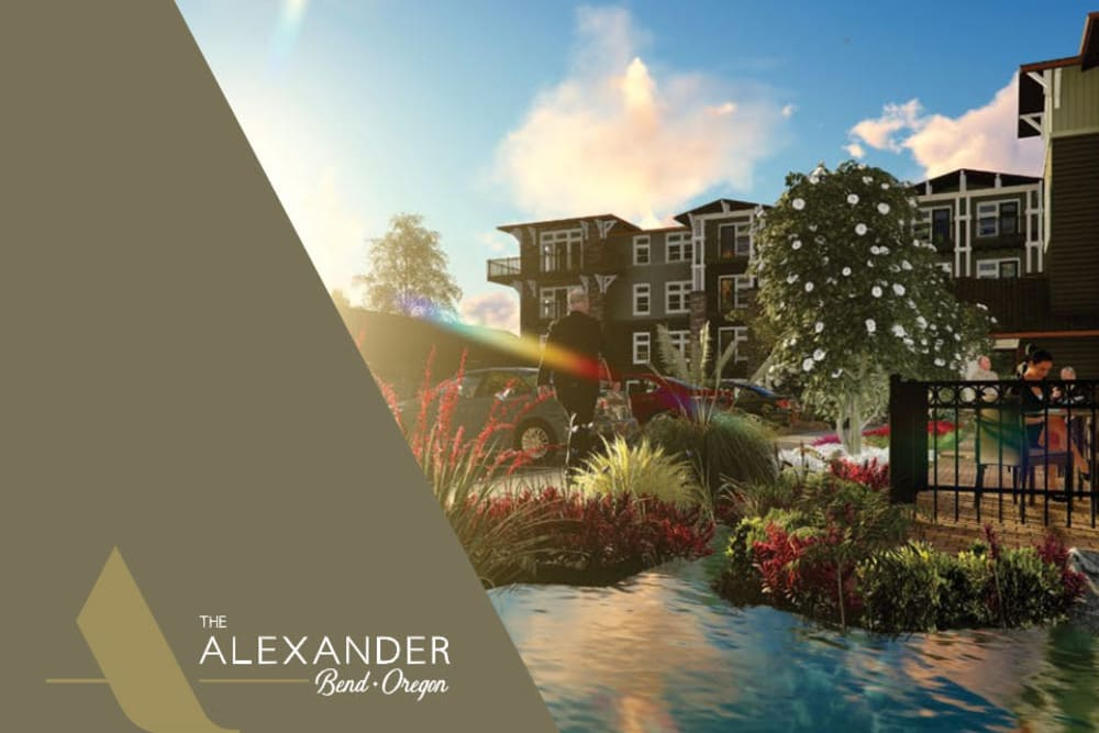 The Alexander online brochure