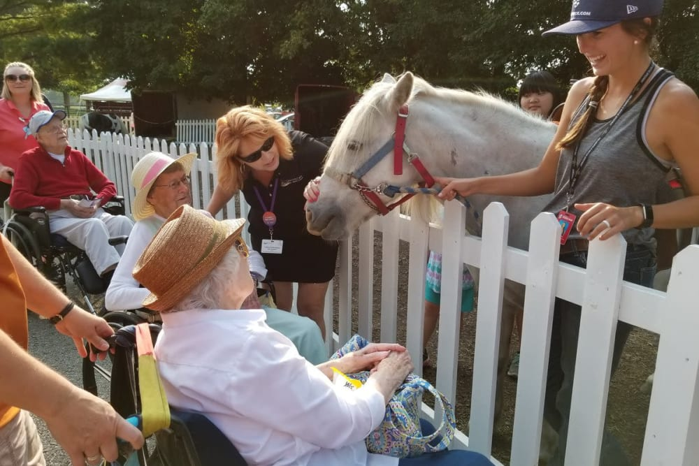 Residents and caretakers petting a horse at Clearvista Lake Health Campus in Indianapolis, Indiana