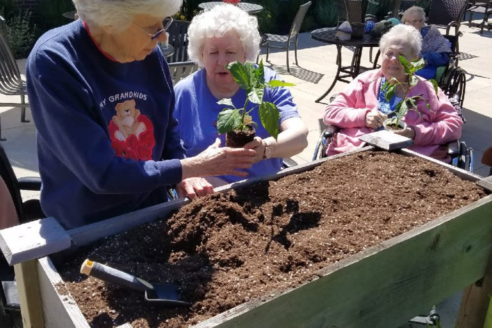 Residents adding new plants to a planter box at The Springs of Mooresville in Mooresville, Indiana