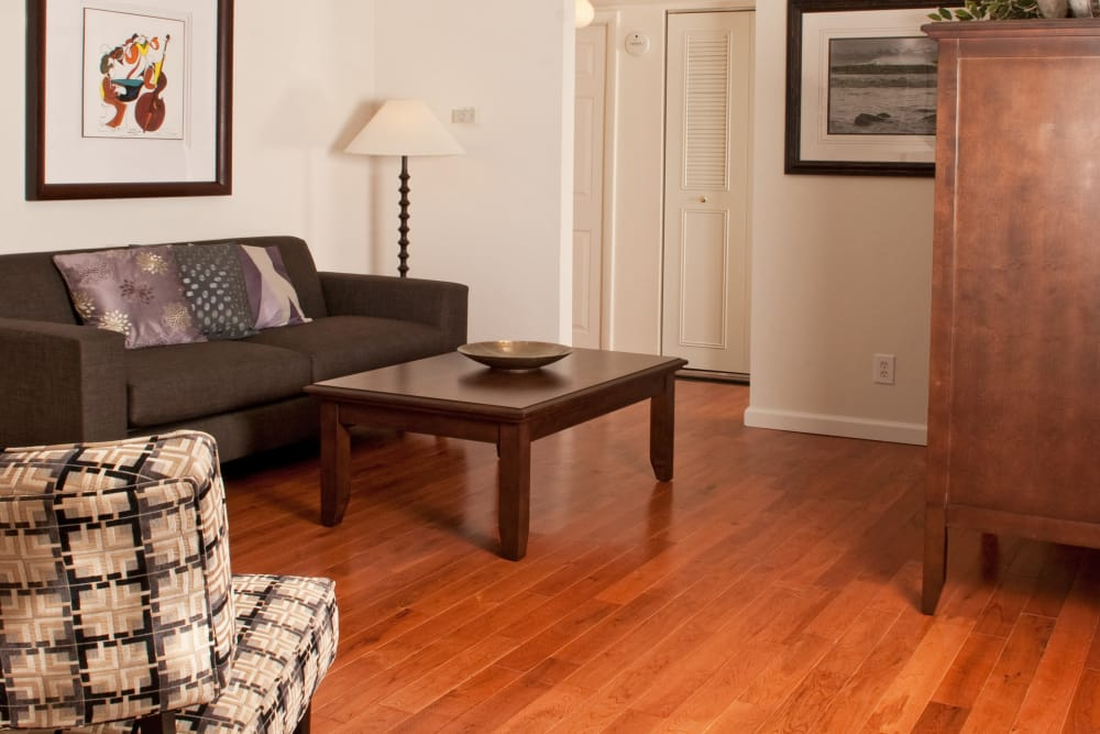 Jamestown Square Apartments showcases a cozy living room in Blackwood, New Jersey