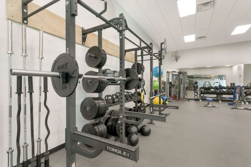 aerial weight room 2 at