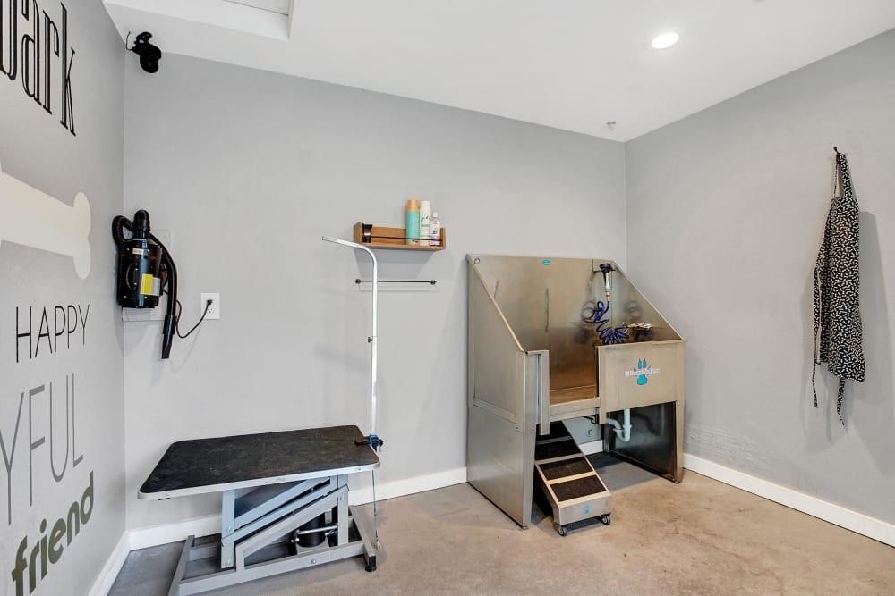 Pet Wash Room