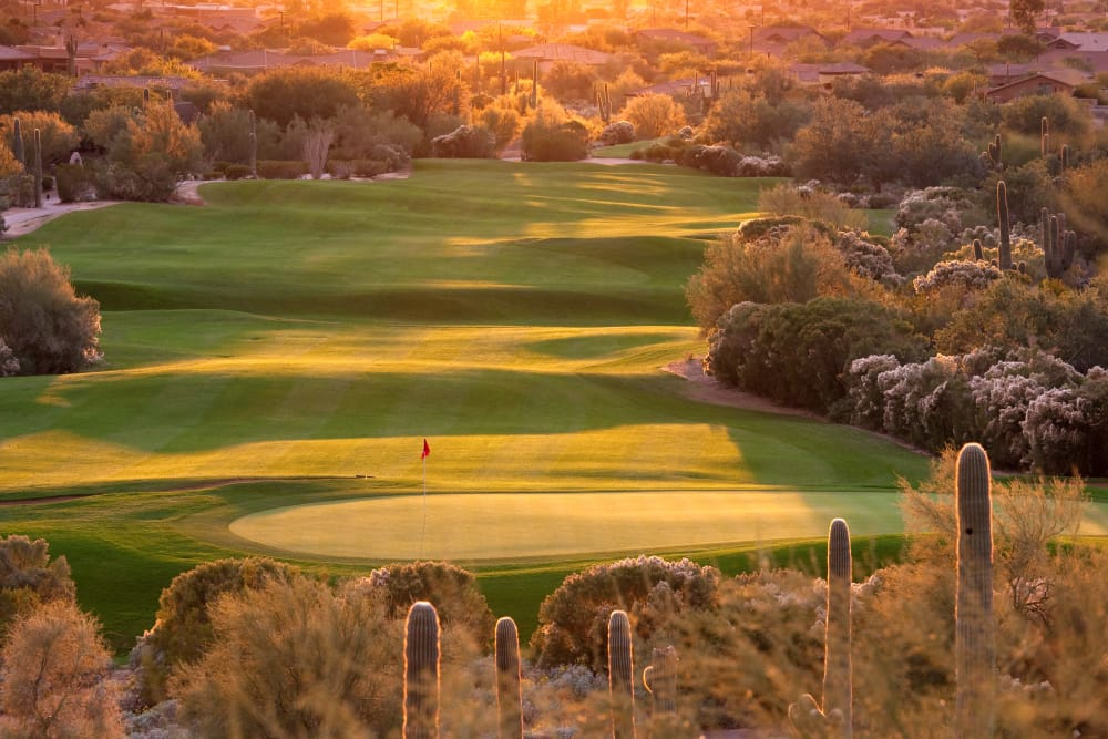 Golf course near San Paseo in Phoenix, Arizona