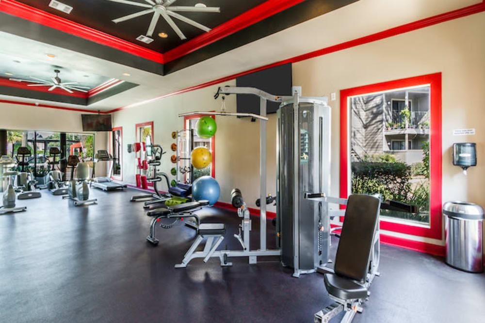 2400 Briarwest offers a fitness center in Houston, Texas